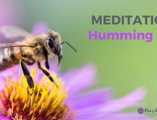 Humming Bee Meditation